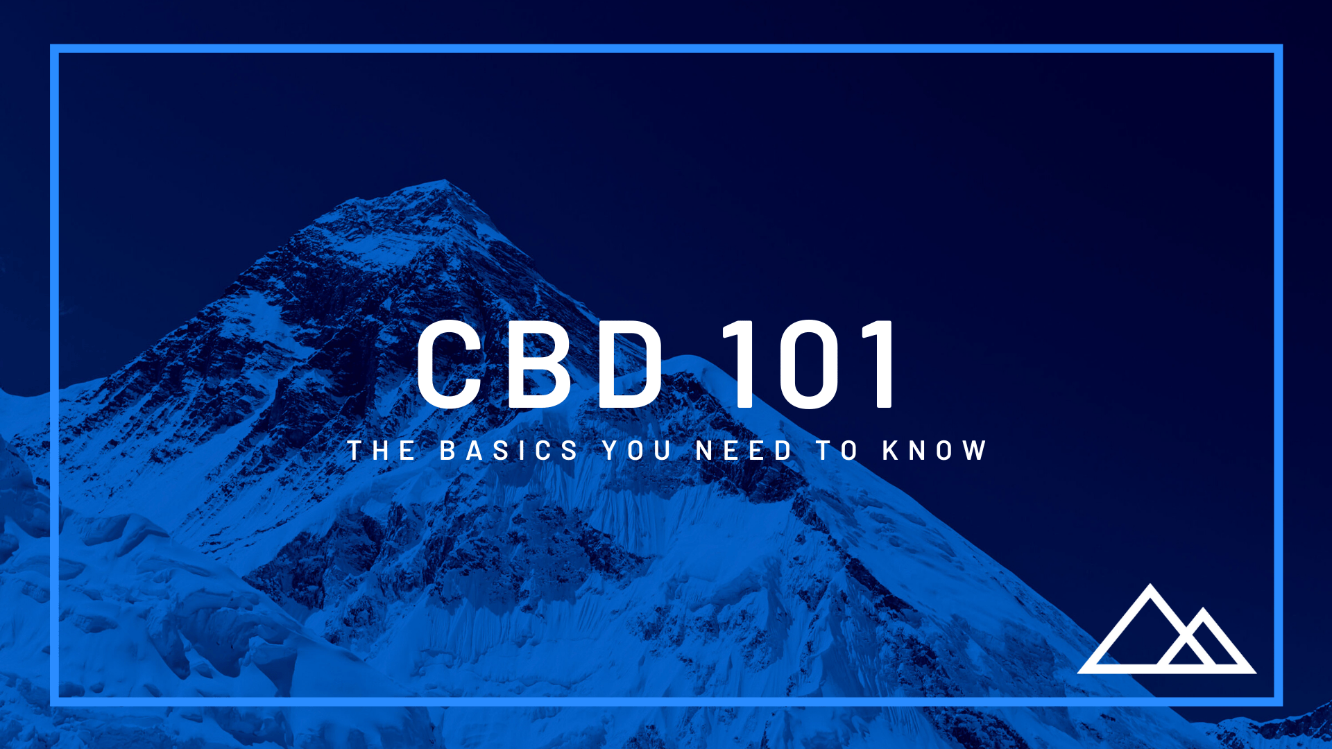 CBD 101: The Basics You Need to Know