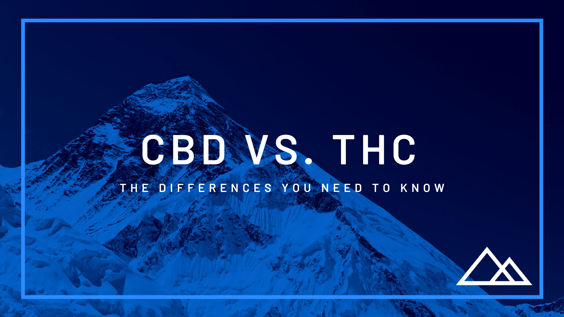 The Differences Between CBD and THC that you NEED to Know!